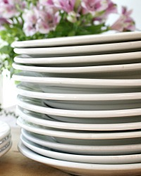 Antique French Ironstone White Plate Set of 6