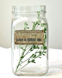 Vintage French Glass Storage Jar Sulfate de Quinine