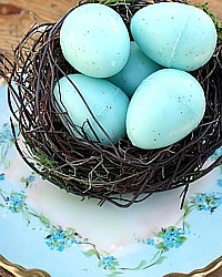 Bird's Nest with 5  Blue Speckled Eggs Soaps