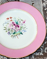 Antique Pink Old Paris Floral Gilt Cabinet Display Plate-Sevres, Vincennes, artist, gold, porcelain, hand painted, lavender, gilt, rimmed, porcelain, purple ,lavender,white, blue, bells, garden, foliage,anemones, scalloped