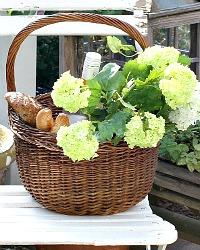 French Hand Woven Panier Market Basket Round